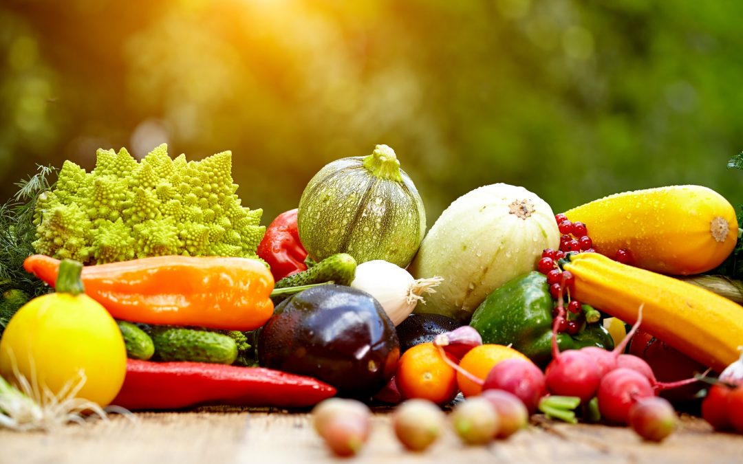 What to eat after plastic surgery: List of foods & tips